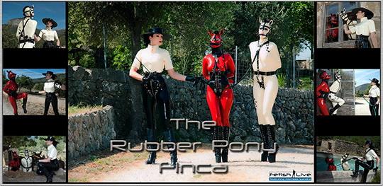 the rubber pony finca