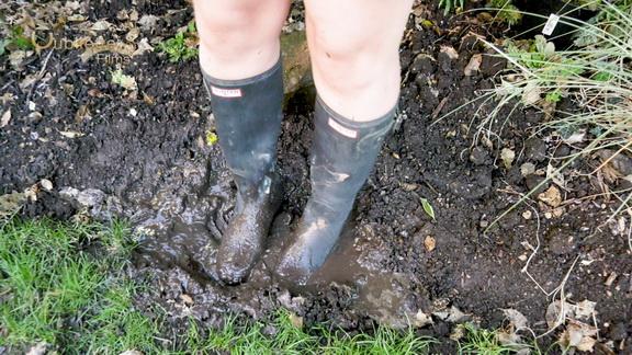 Mud Licking Pig.mp4 snapshot 00.36.000
