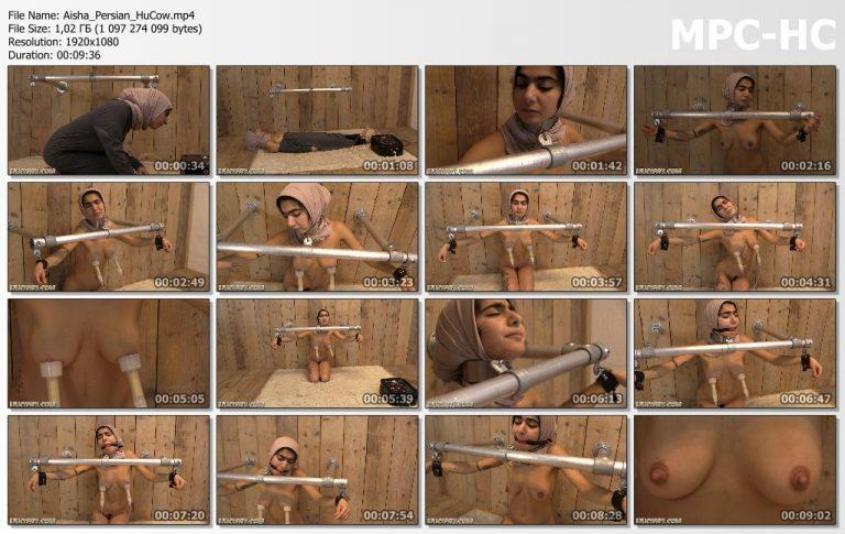 Aisha Persian HuCow.mp4 thumbs 768x485
