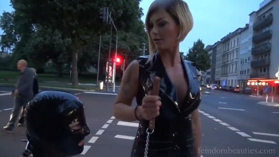 Hello You Horny Pig You Also Want To Stroll With Me.mp4 snapshot 04.28.240