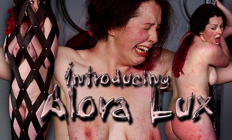 ShS Introducing Alora Lux