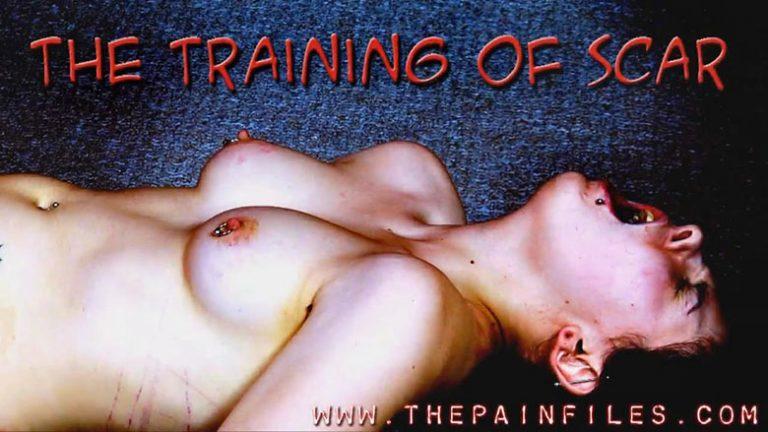 TPF The Training Of Scar 768x432